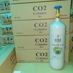 Bình CO2 thủy sinh